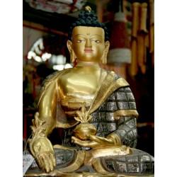 Ο Βούδας της Ιατρικής