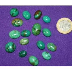 Turquoise Small Cabochons