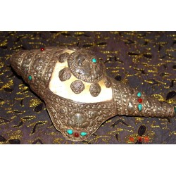 Ceremonial /decorativ Conch from Nepal