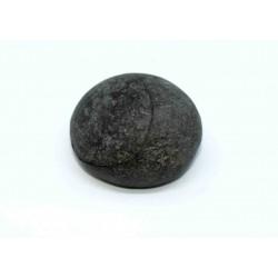 Fossil Egg Shaligram
