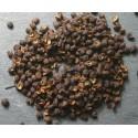 Timur / Timut Pepper from Nepal