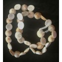 Shiva Eye shell Beads strand 49cm from India